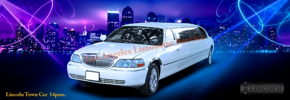 Los Angeles 14 pass.Limousine